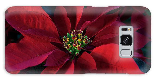 Poinsettia All Profits Go To Hospice Of The Calumet Area Galaxy Case
