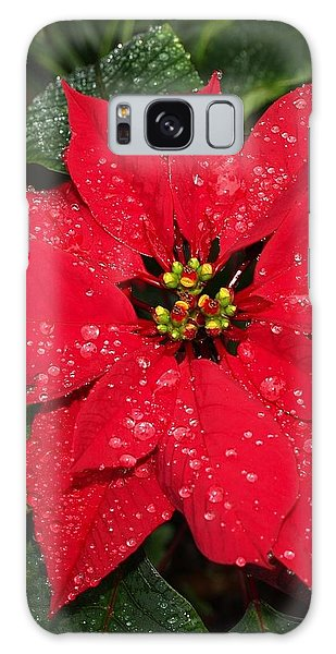 Poinsettia - Frozen In Time Galaxy Case