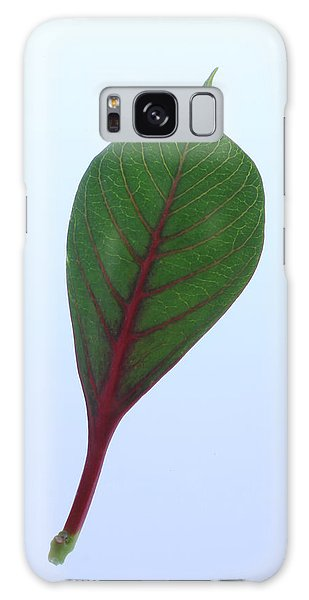 Poinsettia Leaf Galaxy Case by Richard Stephen