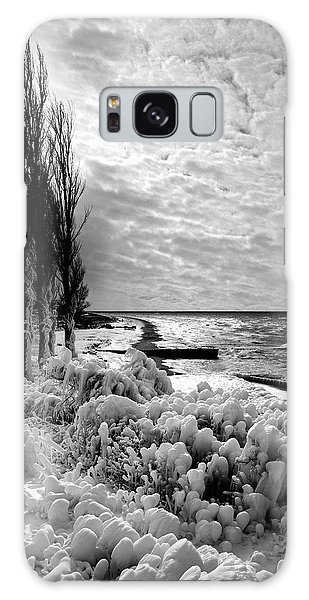 Point Betsie Winter Of '92 Galaxy Case