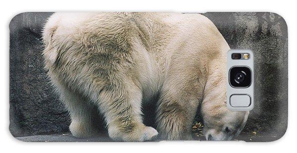 Polar Bear At Zoo Galaxy Case by Myrna Walsh
