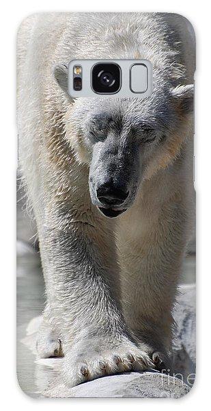 Polar Bear Balance Galaxy Case by DejaVu Designs