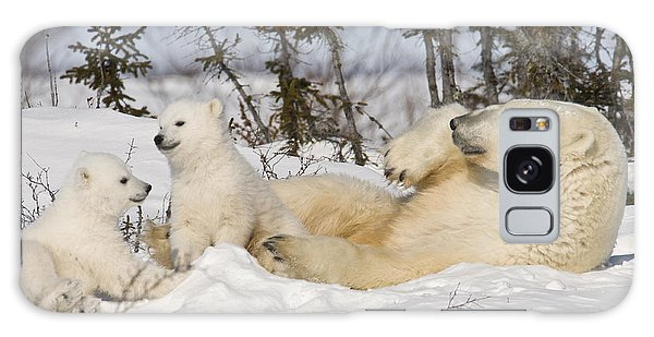 Polar Bear Family Playing In The Snow Galaxy Case