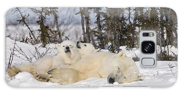 Polar Bear Family Resting Galaxy Case