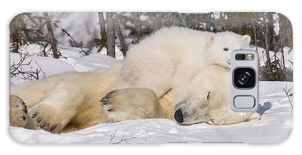 Polar Cub Hugs Its Sleeping Mother Galaxy Case