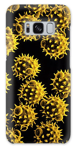 Pollen Galaxy Case - Pollen Of Colt's Foot Flower by R.e.litchfield/science Photo Library