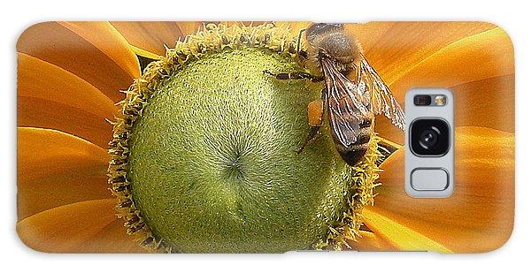 Pollen Time Galaxy Case