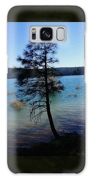 Pollock Pine Galaxy Case