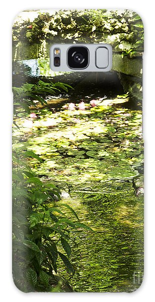 Pond Bridge Galaxy Case