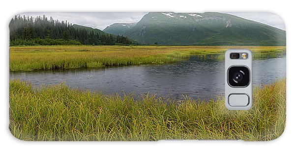 Boreal Forest Galaxy Case - Pond In Middle Of Sedge Meadow by Panoramic Images