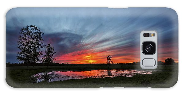 Pond In The Pasture Galaxy Case