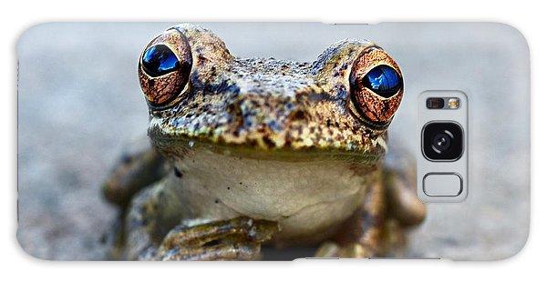 Pondering Frog Galaxy Case