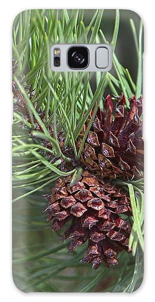Ponderosa Pine Cones Galaxy Case by Sharon Talson