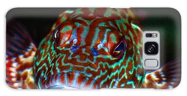 Poopaa Hawaiian Hawk Fish Galaxy Case by Lehua Pekelo-Stearns
