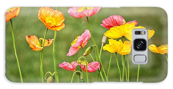 Poppies Blooming Galaxy Case by Joan Herwig