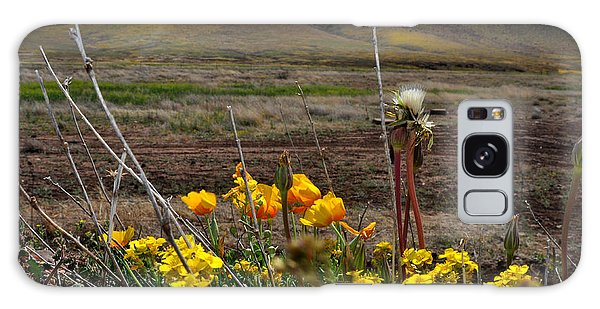 Poppies In The Field Chiracahua Mountains Galaxy Case by Diane Lent