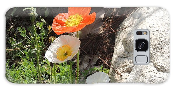 Poppies In The Sun Galaxy Case