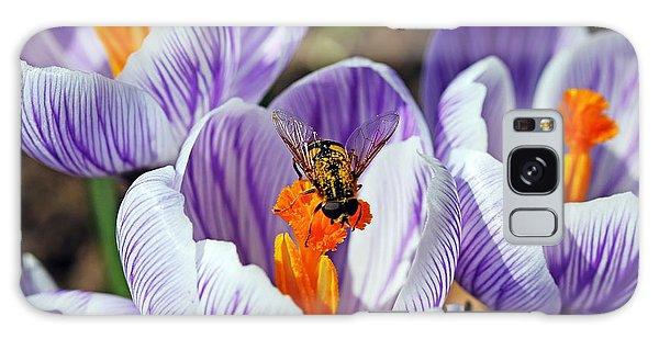 Popping Spring Crocus Galaxy Case by Debbie Oppermann