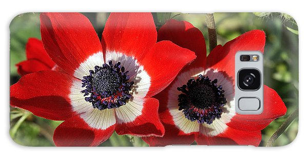 Poppy Anemones Galaxy Case by George Atsametakis