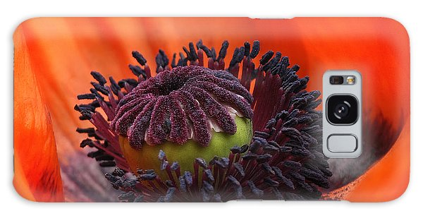 Poppy Galaxy Case by Elaine Manley
