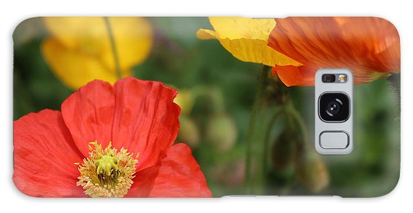 Poppy Iv Galaxy Case by Tiffany Erdman