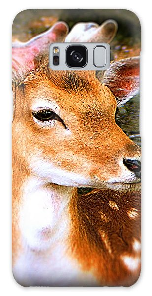 Portrait Male Fallow Deer Galaxy Case
