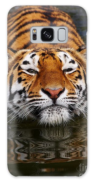 Portrait Of A Bathing Siberian Tiger Galaxy Case