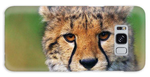 Portrait Of A Cheetah Cub Galaxy Case by Nick  Biemans