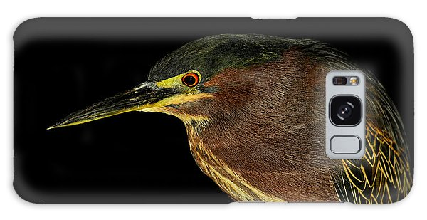 Portrait Of A Green Heron Galaxy Case