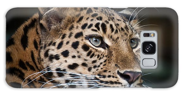 Portrait Of A Leopard Galaxy Case by Chris Boulton