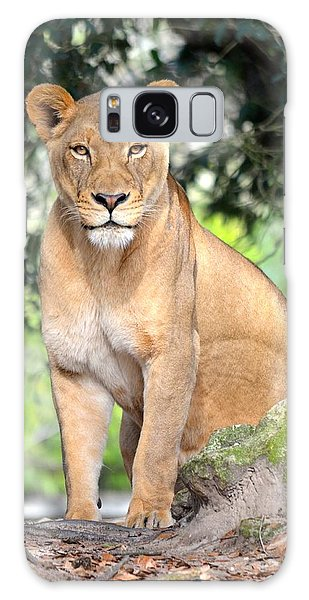 Portrait Of A Proud Lioness Galaxy Case by Richard Bryce and Family