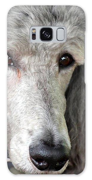 Portrait Of A Silver Poodle Galaxy Case