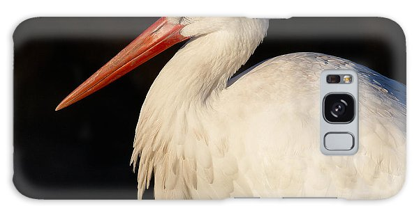 Portrait Of A Stork With A Dark Background Galaxy Case
