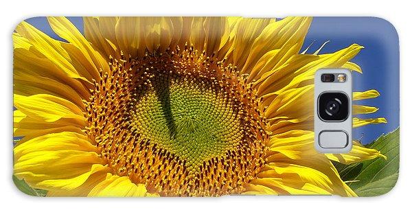 Portrait Of A Sunflower Galaxy Case by Diane Miller