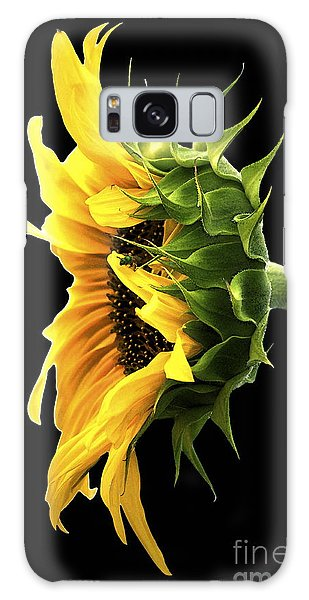Portrait Of A Sunflower Galaxy Case
