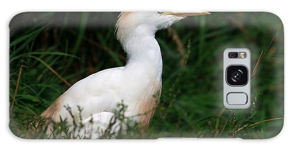 Portrait Of A White Egret Galaxy Case