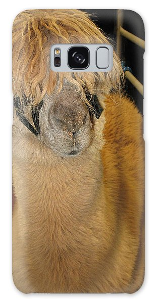 Portrait Of An Alpaca Galaxy Case by Connie Fox