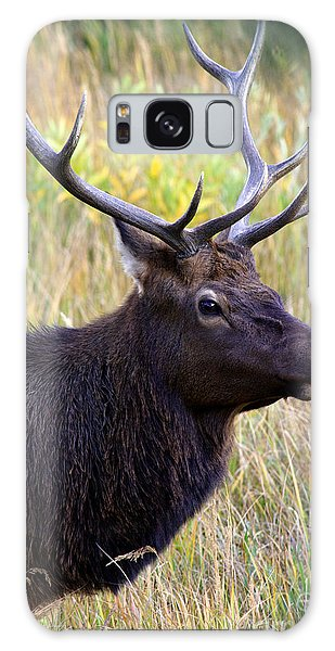 Portrait Of An Elk Galaxy Case