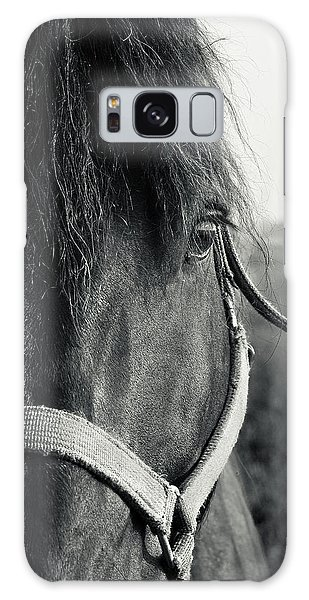 Portrait Of Horse In Black And White Galaxy Case