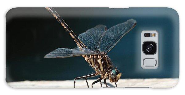 Posing Dragonfly Galaxy Case