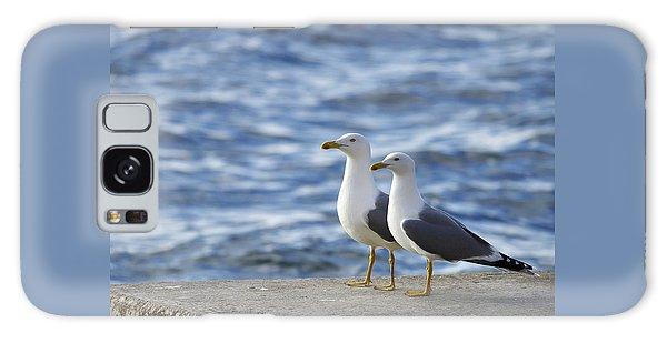 Posing Seagulls Galaxy Case