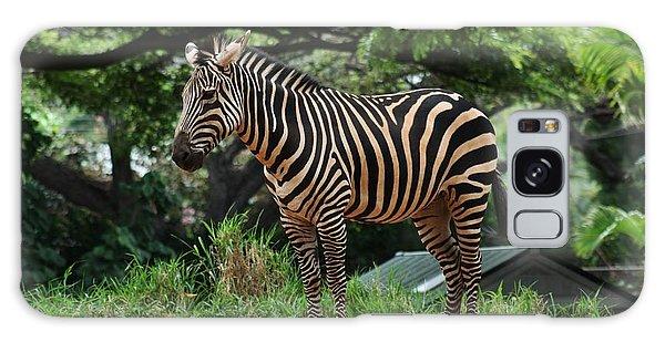 Posing Zebra Galaxy Case by Craig Wood