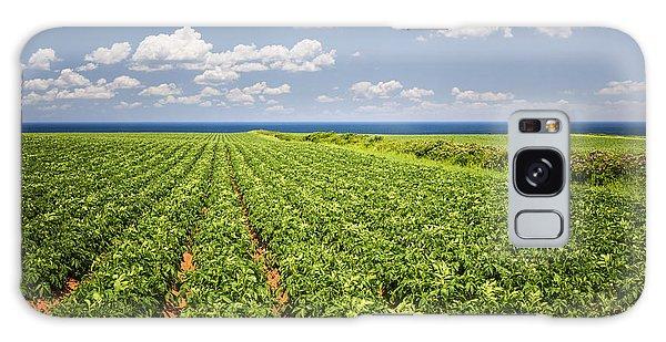 Potato Galaxy Case - Potato Field In Prince Edward Island by Elena Elisseeva