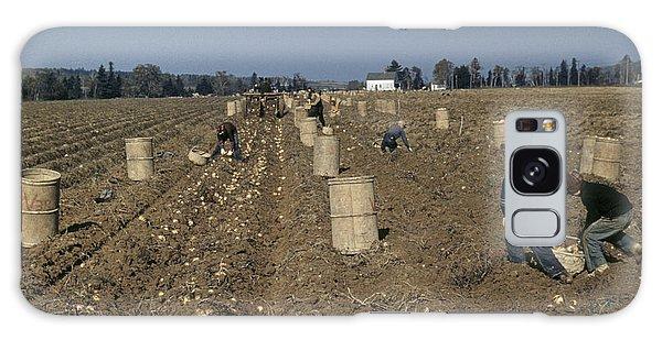 Aroostook County Galaxy Case - Potato Harvest, 1940 by Granger