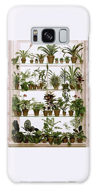 Potted Plants On Shelves Galaxy Case