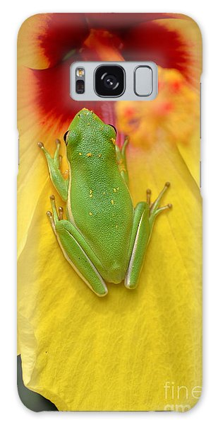 Powdered Frog  Galaxy Case by Kathy Gibbons