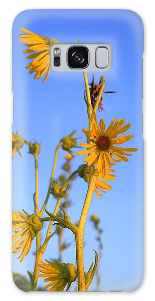 Prairie Compass Plant Galaxy Case by Ed Cilley