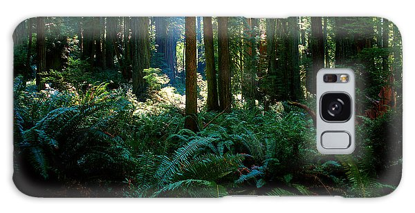 Prairie Creek Redwoods State Park 10 Galaxy Case
