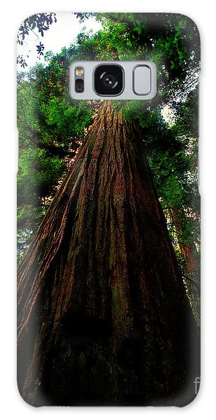 Prairie Creek Redwoods State Park 13 Galaxy Case