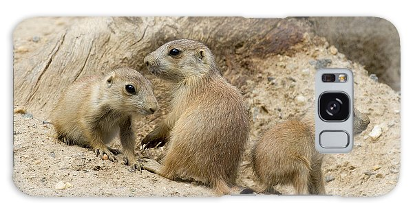 Prairie Dog Pups Galaxy Case